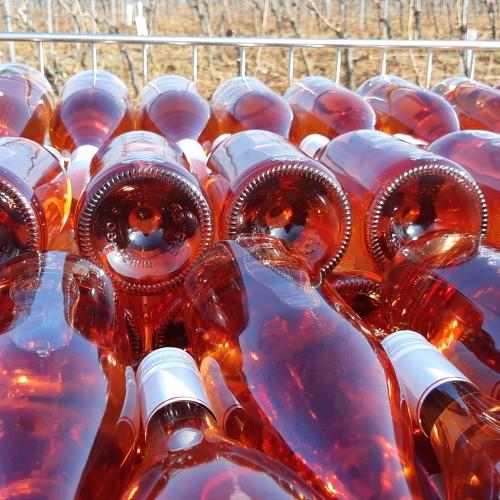 Fľašovanie nových ročníkov vína